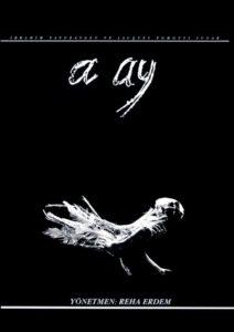 a-ay-filmdoktoru