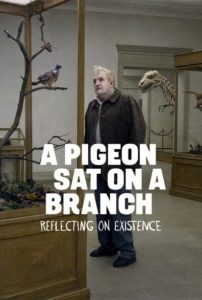 pigeon-filmdoktoru